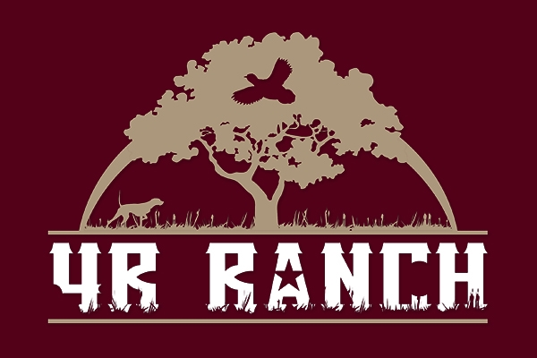 Website Review 4R Ranch